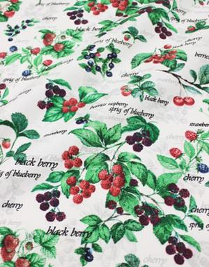 {[en]:Panama weave cotton ''Garden paradise''}